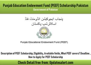 PEEF Undergraduate/Postgraduate Scholarship Pakistan